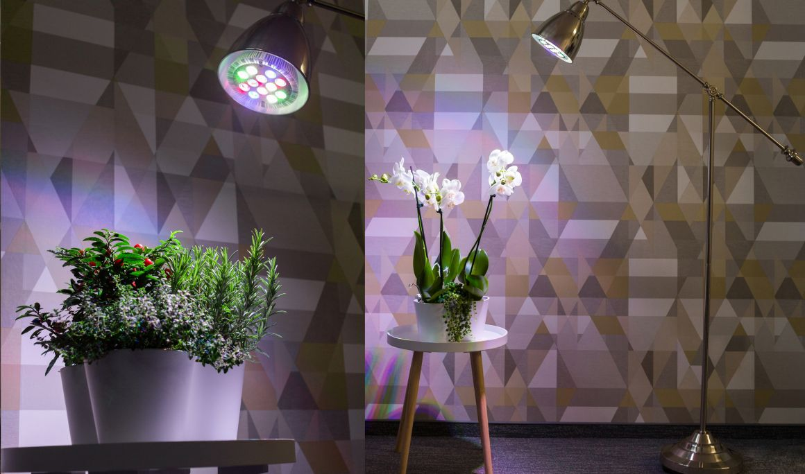 Hortiled LED lempa